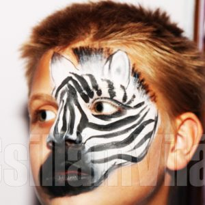 Zebra-arcfestés